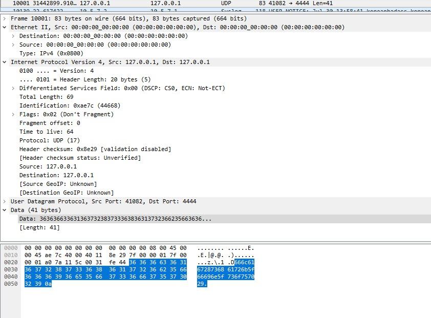 udp_wireshark
